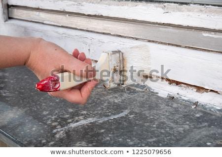 Old house renovation, woman painting window Stock photo © simazoran