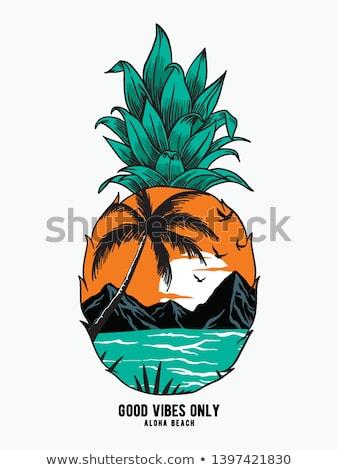 Tropisch strand label zon vogels palmbomen hemel Stockfoto © SArts