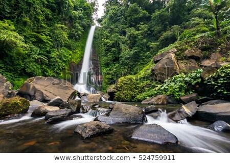 cachoeira · bali · ilha · Indonésia · ver · natureza - foto stock © boggy