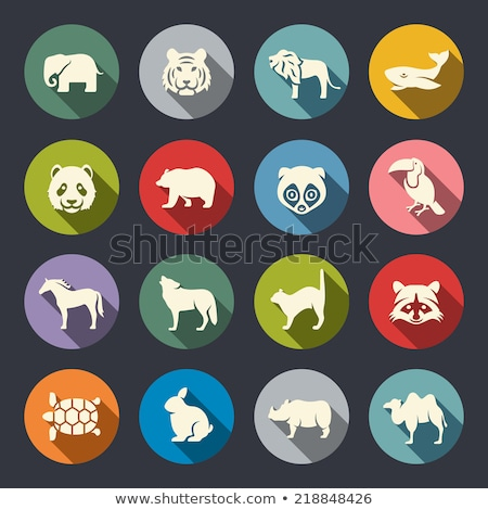 Rabino ícone círculo animal isolado Foto stock © Imaagio