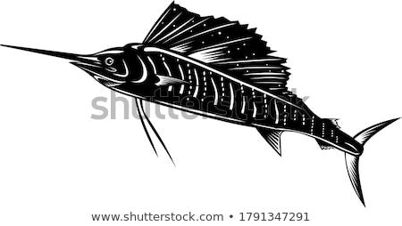 Atlantic Sailfish Jumping Up Woodcut Retro Black and White Stock photo © patrimonio