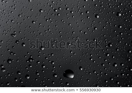 Seamless tiling water drops on glass background Stock photo © Krisdog