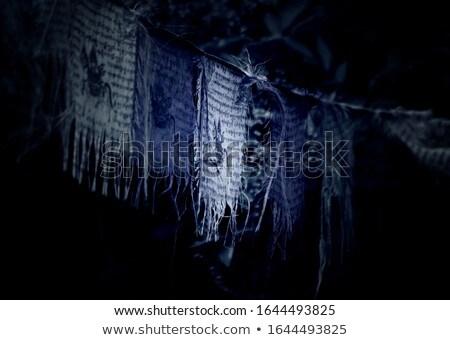 Tibetan prayer flags and ancient wall art Stock photo © bbbar