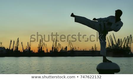 Karate tramonto silhouette uomo sole design Foto d'archivio © adrenalina