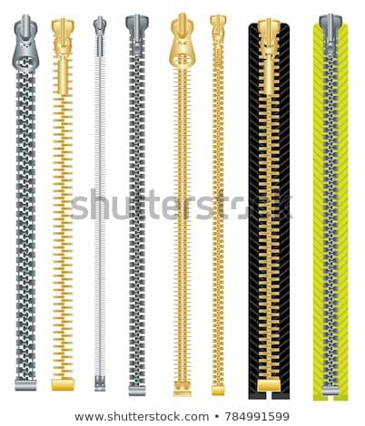 Altın fermuar renkli örnek vektör Stok fotoğraf © derocz