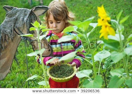 pretty little girl for fun feeds wooden horse in garden stock photo © paha_l