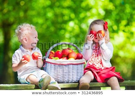 Sorella fratello mangiare mela ragazza Foto d'archivio © feverpitch