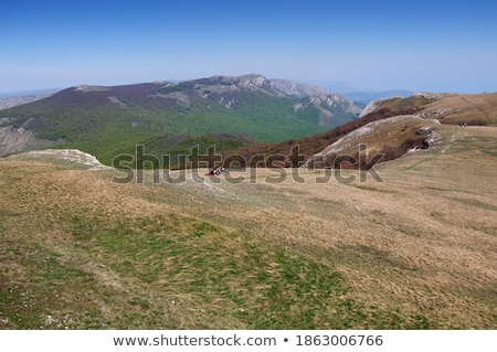 Beautiful daylight view to blue sea and green mountains Stock photo © frimufilms