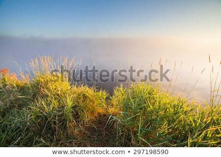 pesca · montana · río · puesta · de · sol · cielo · nubes - foto stock © leonidtit