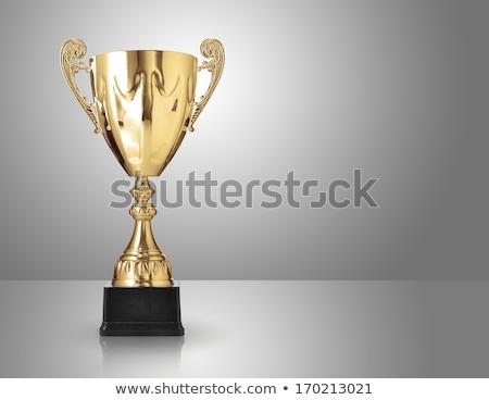 Prata troféu cinza campeão copo Foto stock © wavebreak_media
