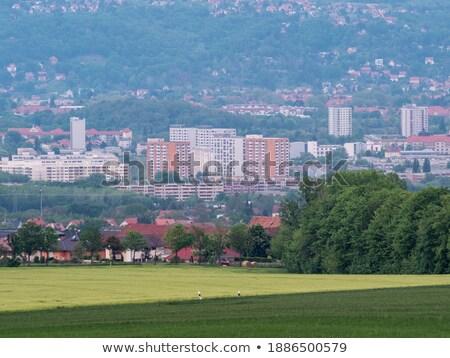 Apartment blocks in Dresden Stock photo © manfredxy