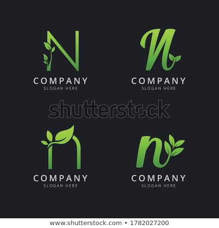 зеленый логотип вектора знак элемент Сток-фото © blaskorizov