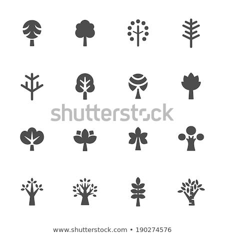 Stockfoto: Ingesteld · najaar · bomen · iconen · stijl