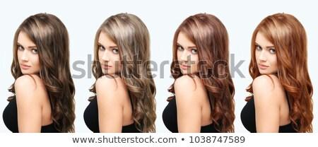 Szett lány különböző haj szín illusztráció Stock fotó © bluering