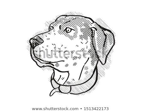 Stockfoto: Hondenras · cartoon · retro · tekening · stijl · hoofd