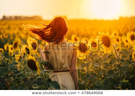 red haired woman outdoors in a sunflower field stock photo © tobkatrina