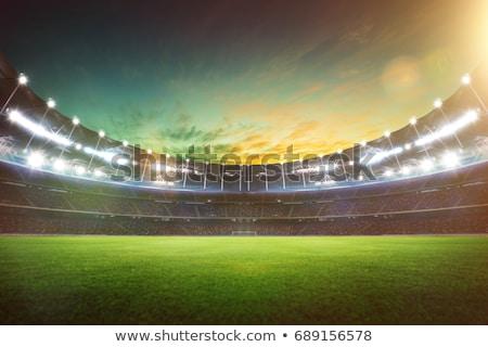 empty goalpost Stock photo © sirylok