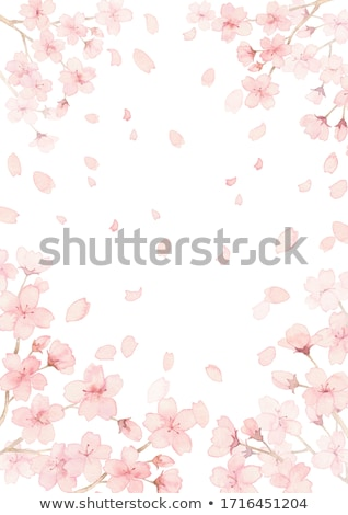 Framing with Blossom Stock photo © WaD