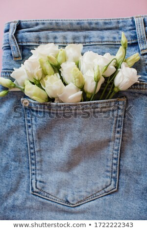 Stock photo:  blue jeans pocket with greeting card
