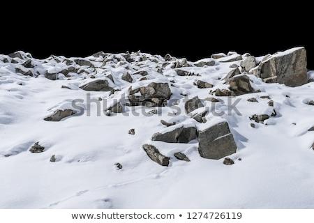 Stones in the snow stock photo © kasjato