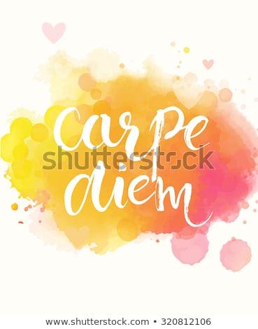 Moderne citaat aquarel succes ontwerp Stockfoto © orson