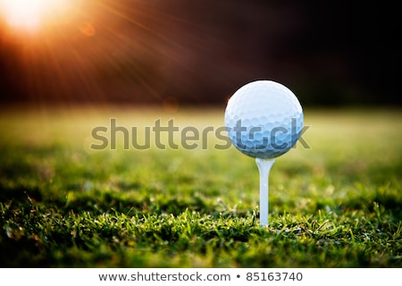 golf ball in the meadow Stock photo © adrenalina