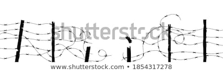 A barbwire fence Stock photo © bluering