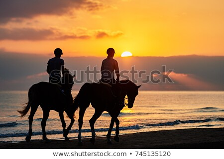 riders and horses in the sea Stock photo © cynoclub