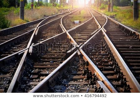 Trem seguir ilustração paisagem fundo montanha Foto stock © bluering