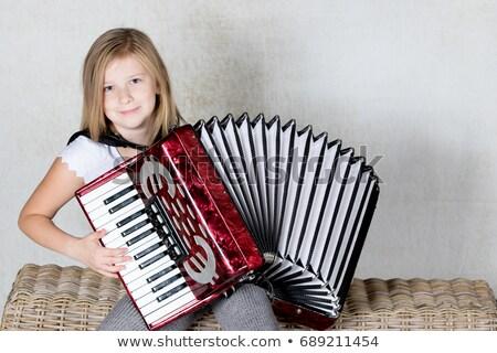 аккордеон игрок студию энергии Постоянный играет Сток-фото © IS2