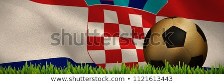 Grass growing outdoors against digitally generated croatian national flag Stock photo © wavebreak_media