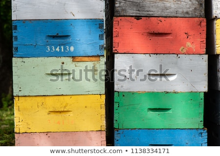 Beekeeping boxes stacked and ready to be transported Stock photo © FreeProd