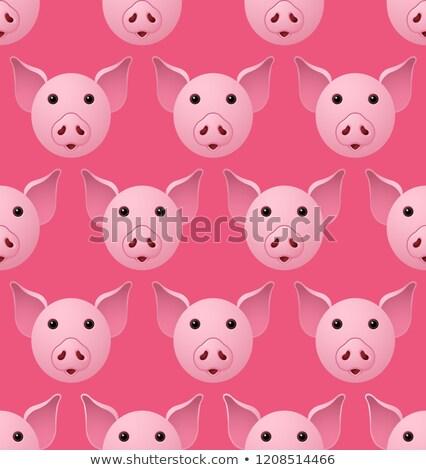 Сток-фото: Новый · год · свинья · шаблон · с · Новым · годом · Рождества · лице