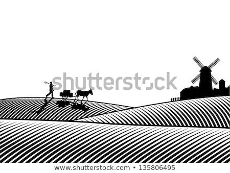Agricoltore mulino a vento farm illustrazione sfondo pollo Foto d'archivio © colematt