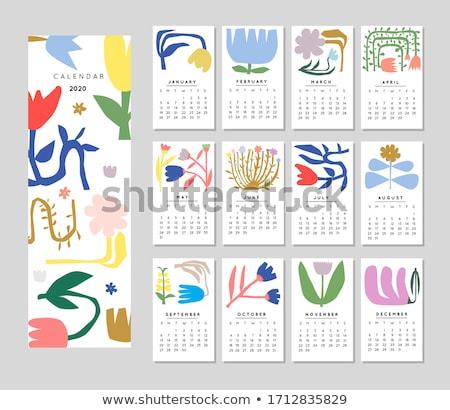 2020 flower calendar design template Stock photo © SArts