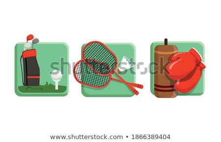 Luvas de boxe equipamento cor vetor luvas Foto stock © pikepicture