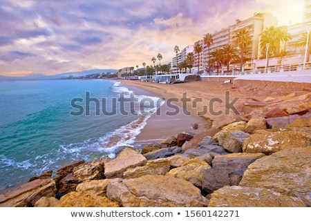 Cannes. Idyllic palm waterfront and sand beach in Cannes sun haz Stock photo © xbrchx