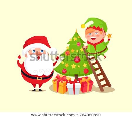 Kerstman elf pijnboom kerstmis christmas traditie Stockfoto © robuart