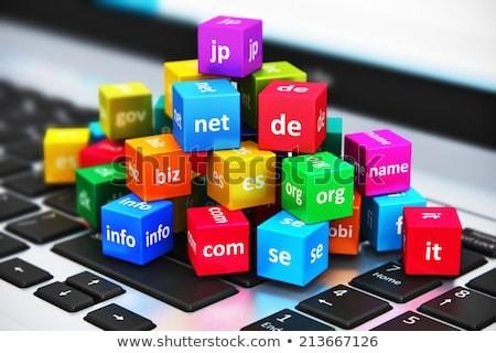 Site hospedagem internet domínio 3D 3d render Foto stock © djmilic