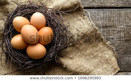 Yumurta sepet yatay görmek taze içinde Stok fotoğraf © bugstomper