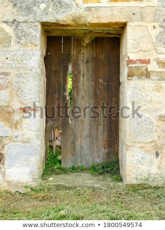 öreg zöld ajtó kilátás mediterrán építészet Stock fotó © frank11