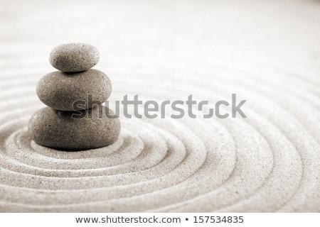 Zen 3 Stock photo © Spectral