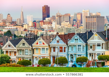 painted lady stock photo © cboswell