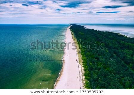ストックフォト: ビーチ · 半島 · ポーランド · 夏 · 雲 · ヨーロッパ