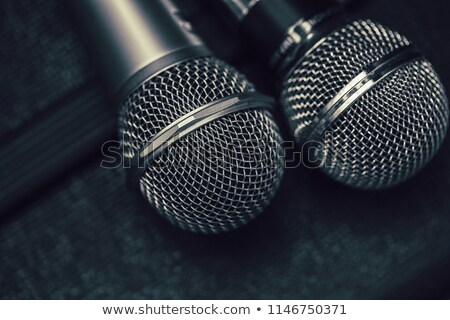 Musical duo Stock photo © photography33
