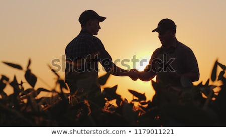 Business of Agriculture Stock photo © Lightsource