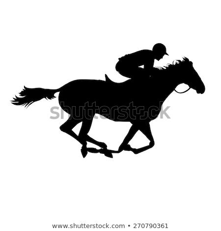 Racing Horse Icon Stock photo © cteconsulting