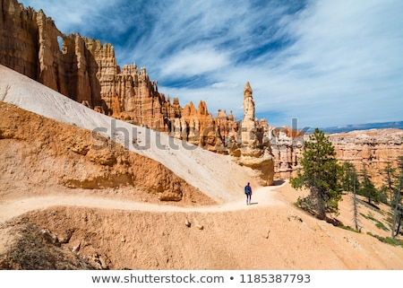 vertical view of bryce canyon stock photo © vwalakte