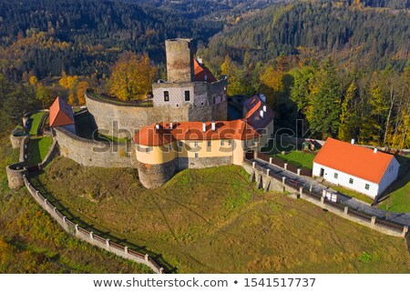 gothic castle SVojanov, Czech republic Stock photo © Sarkao