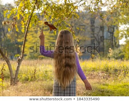Little schooler girl in the autumn park Stock photo © dashapetrenko